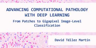 PhD defense David Tellez
