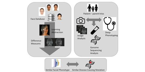 Quantitative facial phenotyping of patients with intellectual disability